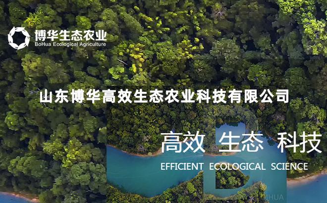 山东博华高效生态农业科技有限公司